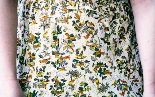 Bird Novelty Print Dress by CalenderGirlVintage