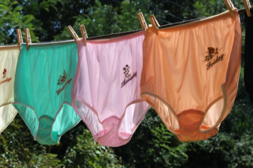 Days of the Week Panties by Sassy Granny Knickers